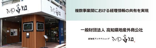 kochi_WebTop.jpg